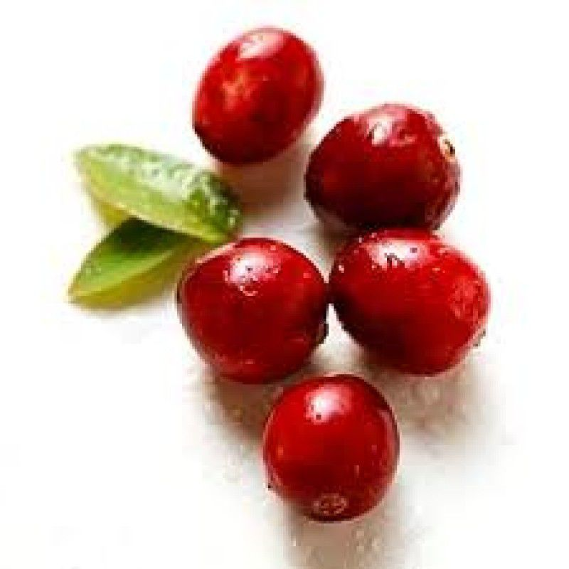 Cranberry® 400mg - 60capsulas