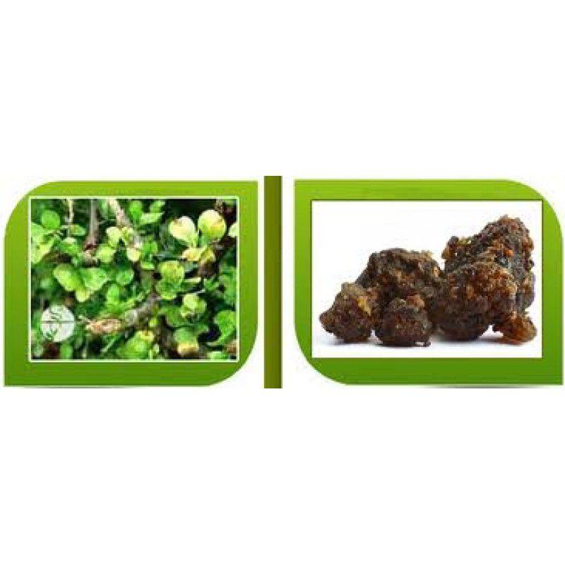 Guggul (Commiphora mukul) 500 mg - 60capsulas