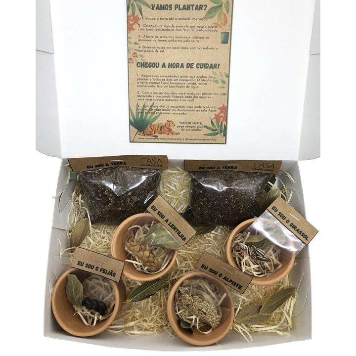 Kit para Plantar Jardinagem Brotinhos