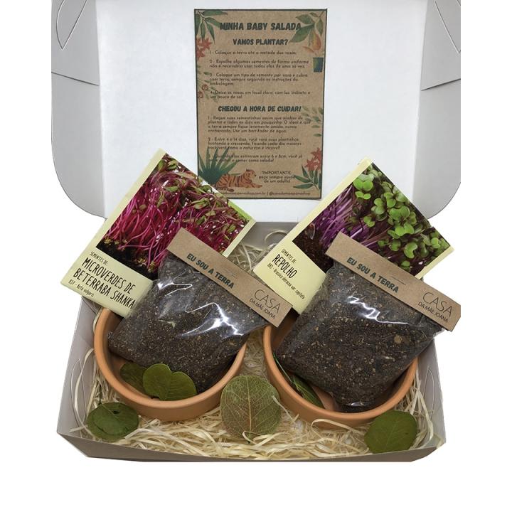Kit para Plantar Jardinagem Salada Baby