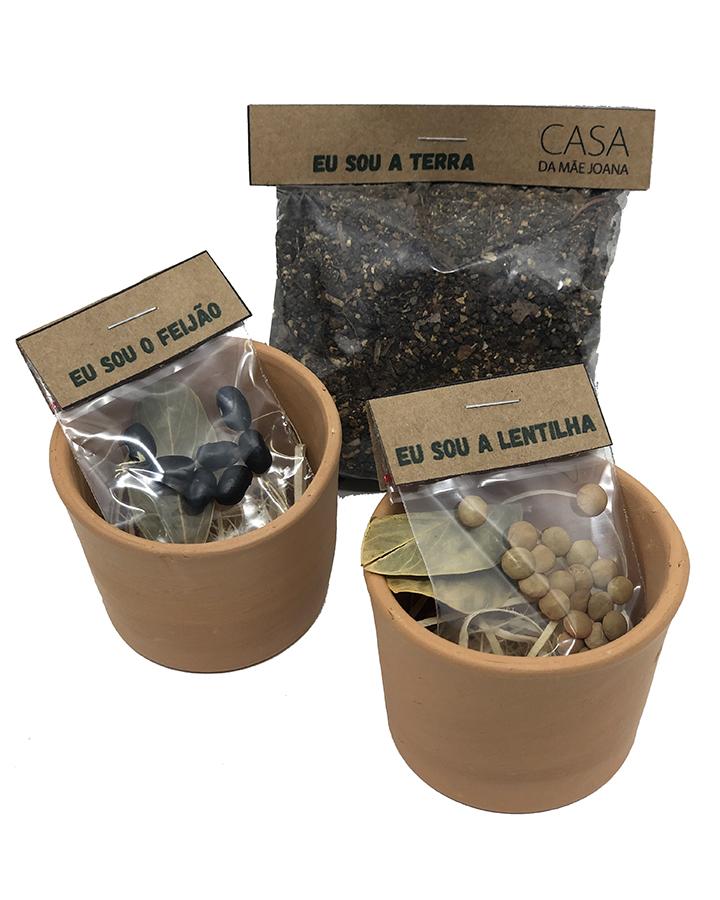 Mini Vaso Cerâmica 2 Unidades com Sementes Feijão e Lentilha