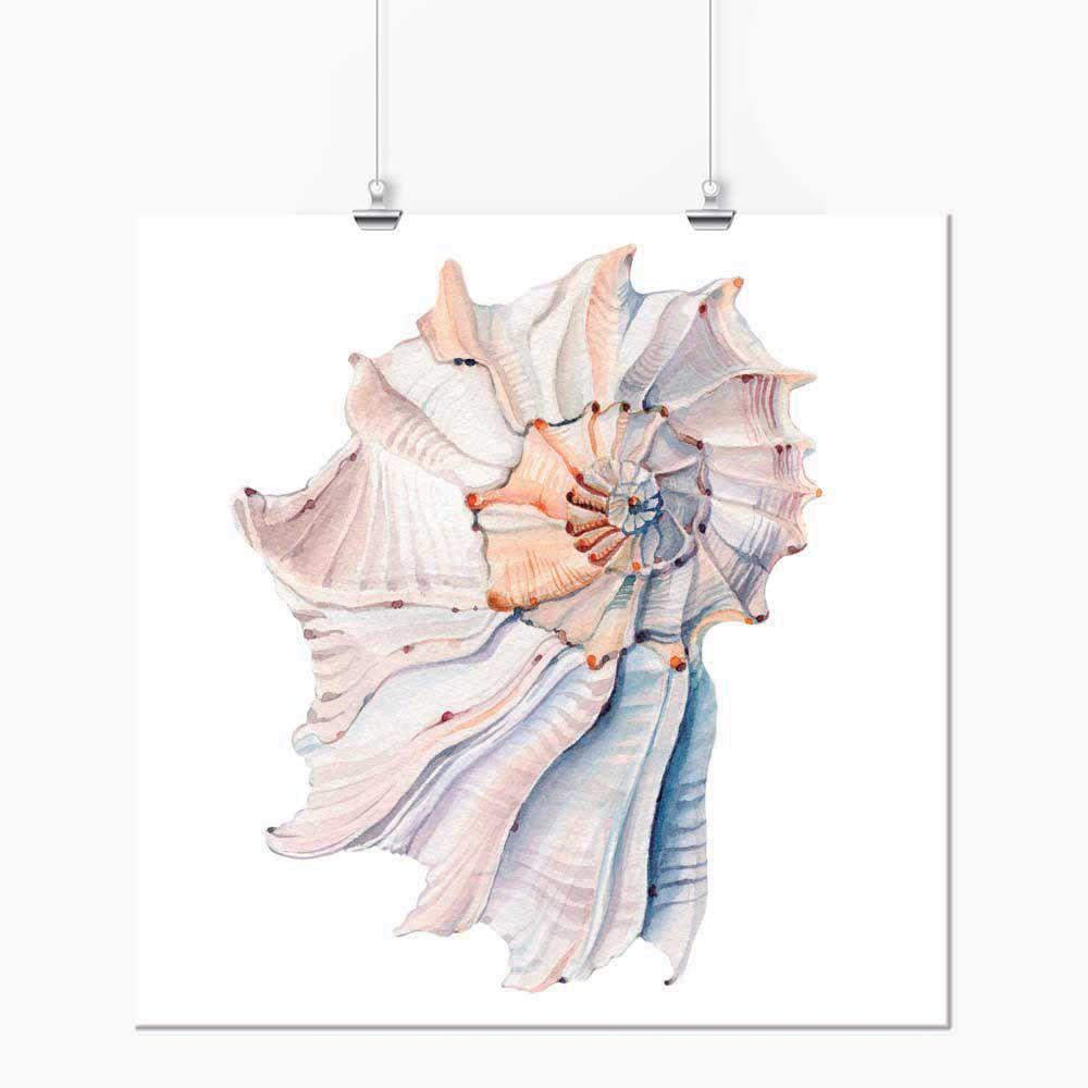 Pôster - Aquarela Pastel Caramujo