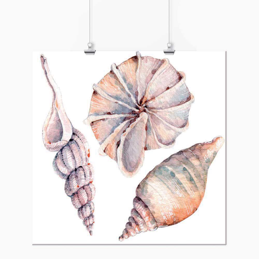 Pôster - Aquarela Pastel Caramujo Trio