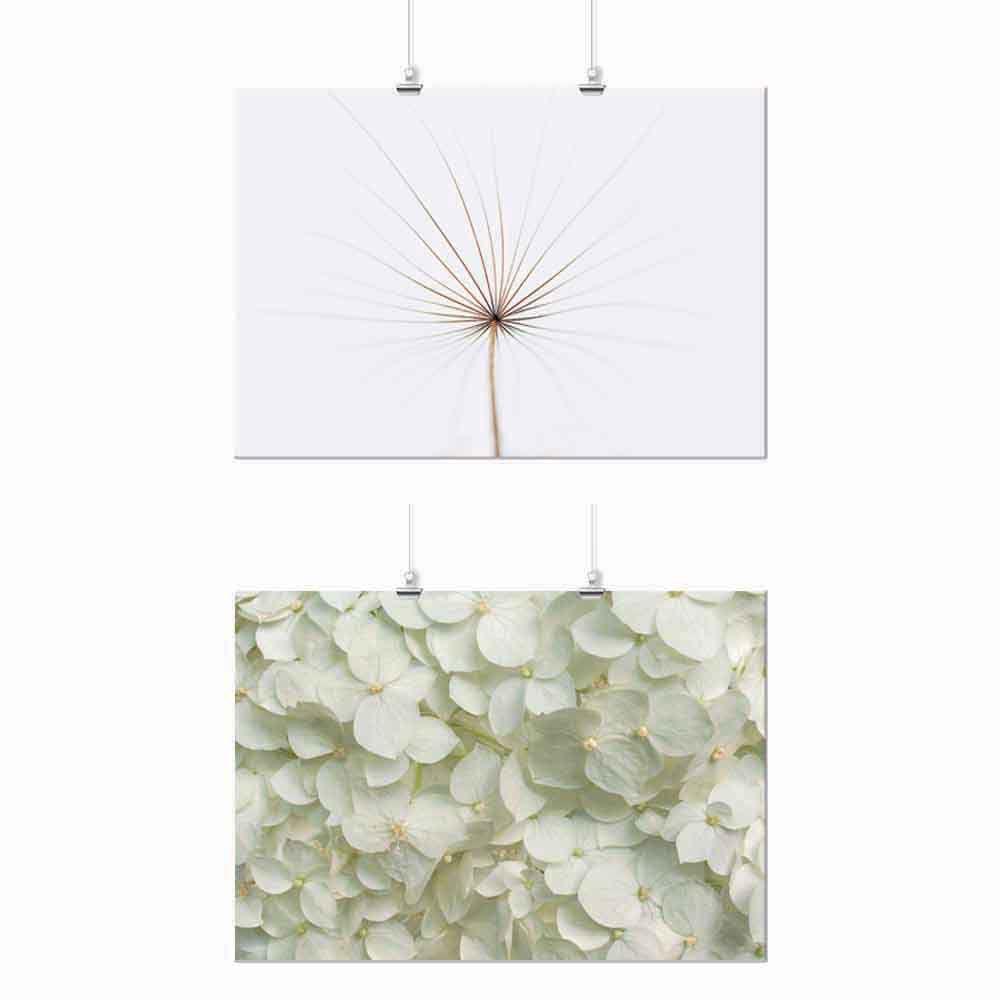 Pôster Conjunto Flor Branca 2 Unidades