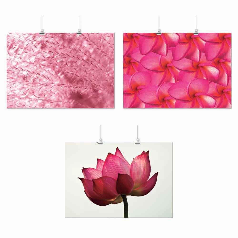 Pôster Conjunto Flor Rosa 3 Unidades
