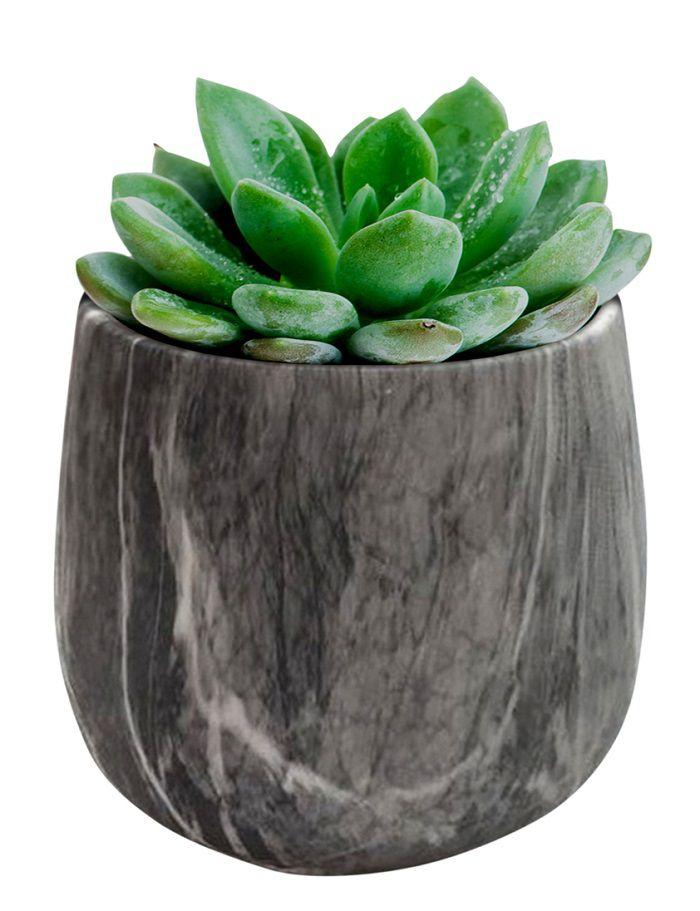 - Vaso - Cachepot marmorizado