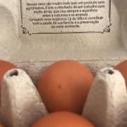Ovos Orgânicos Tipo Grande - 12 unidades