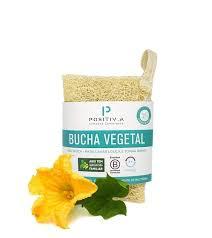 Bucha Vegetal - unidade POSITIVA