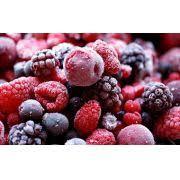 Frutas Vermelhas Congeladas  (Morango, Amora, Mirtilo e Framboesa) - 500g