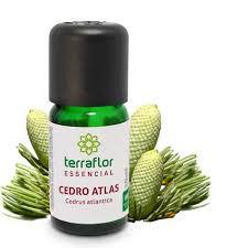 Óleo Essencial de Cedro Atlas 10ml - TERRA FLOR