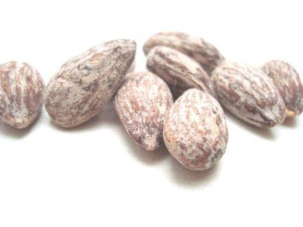 Amêndoas Torradas e Salgadas - 500gr à 5kg