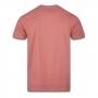 Camiseta New Era Brand Have Fun Summer Drink