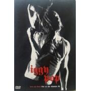 IGGY POP KISS MY BLOOD DVD
