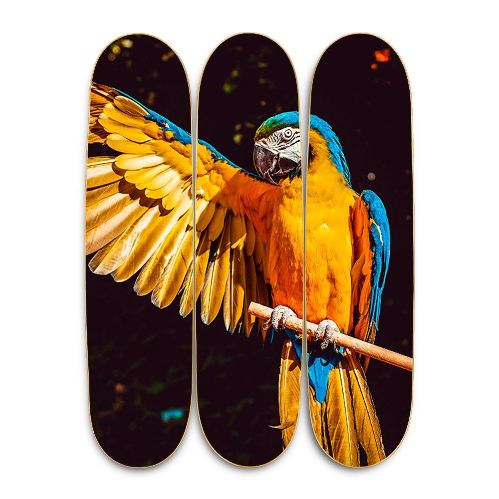 Quadro Amazônia