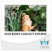 ESSÊNCIA ALECRIM E CASCAS E FOLHAS 1 LITRO