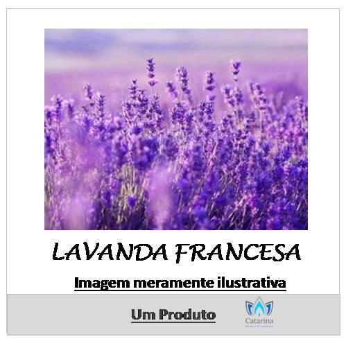 ESSÊNCIA LAVANDA FRANCESA