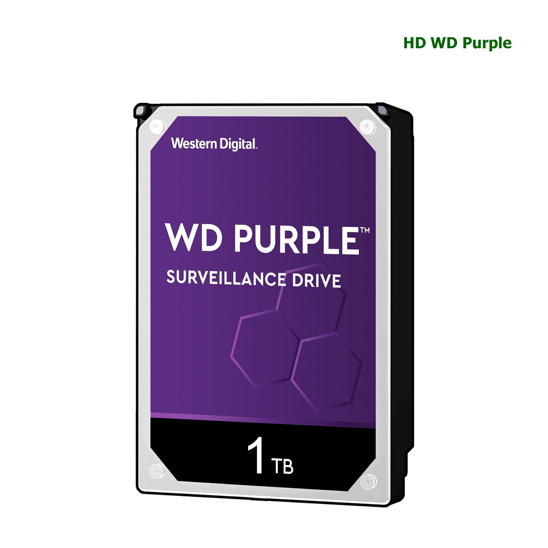 Disco Rígido HD Wd Purple Surveillance Para CFTV 1T