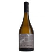 Casa Valduga Terroir Sauvignon Blanc 750 ml
