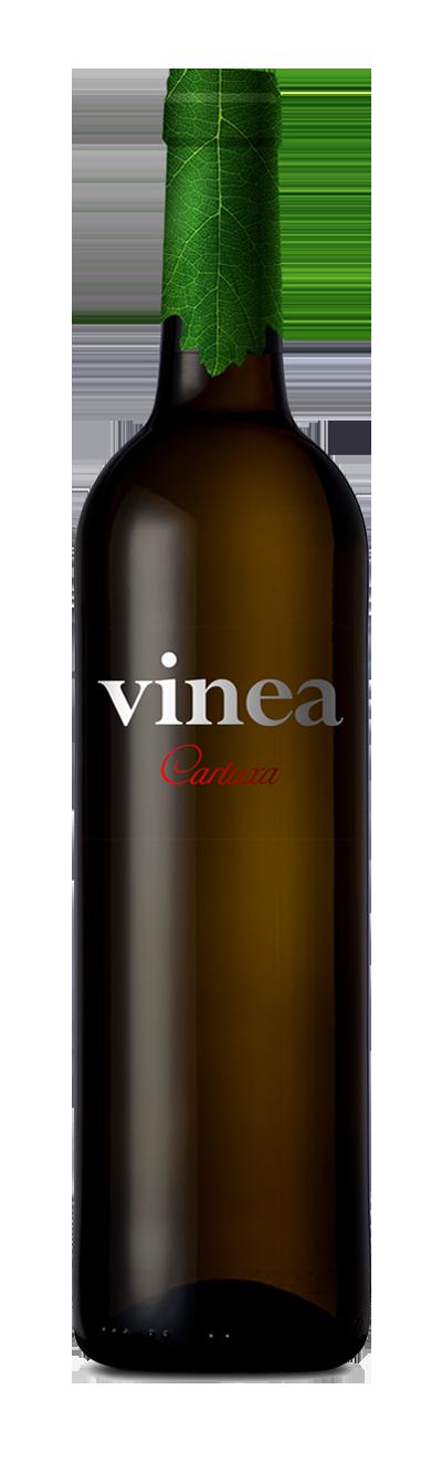 Vinea Cartuxa Branco 750 ml