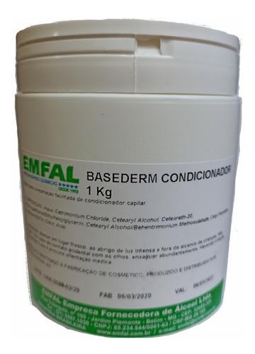 Base Para Fabricar Condicionador 1 Kg Uso Profissional