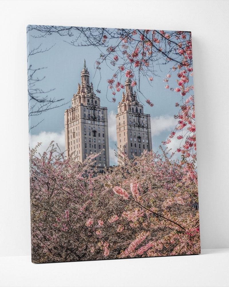 Placa Decorativa Cerejeiras Na Cidade