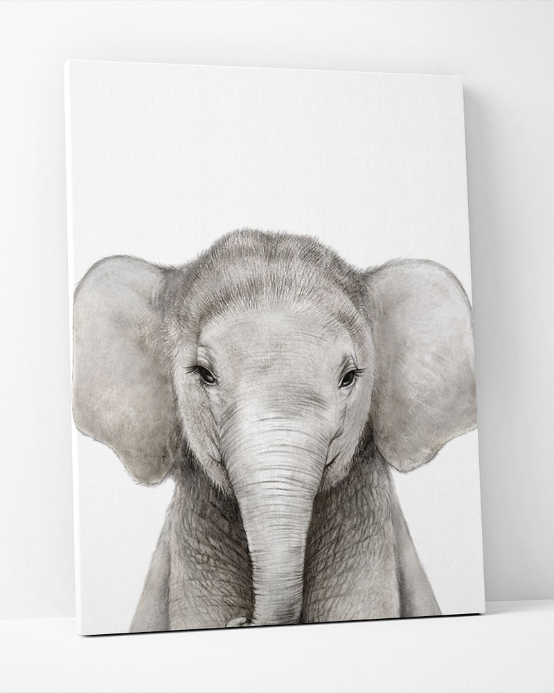 Placa Decorativa Elefante Baby