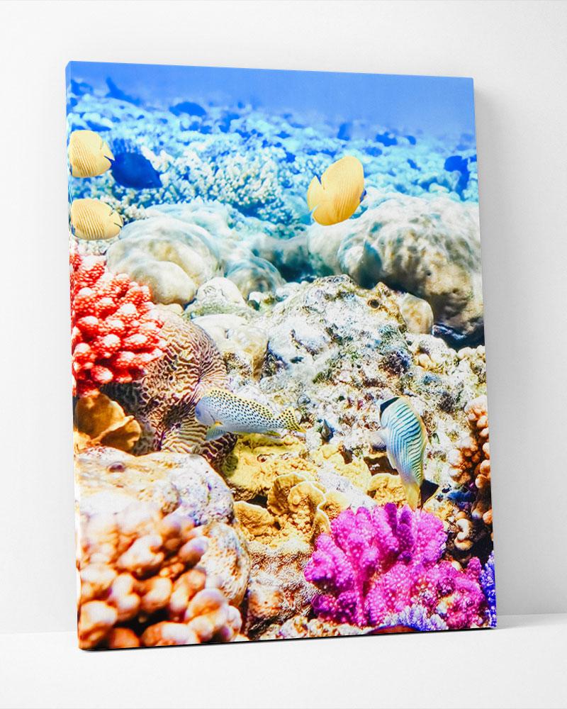 Placa Decorativa Fundo Do Mar
