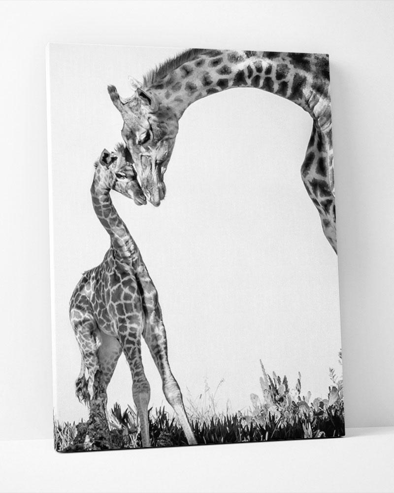 Placa Decorativa Girafa & Filhote Pb