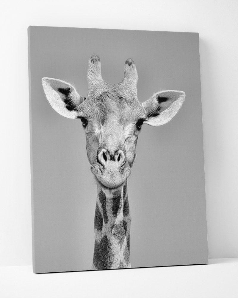 Placa Decorativa Girafa Pb