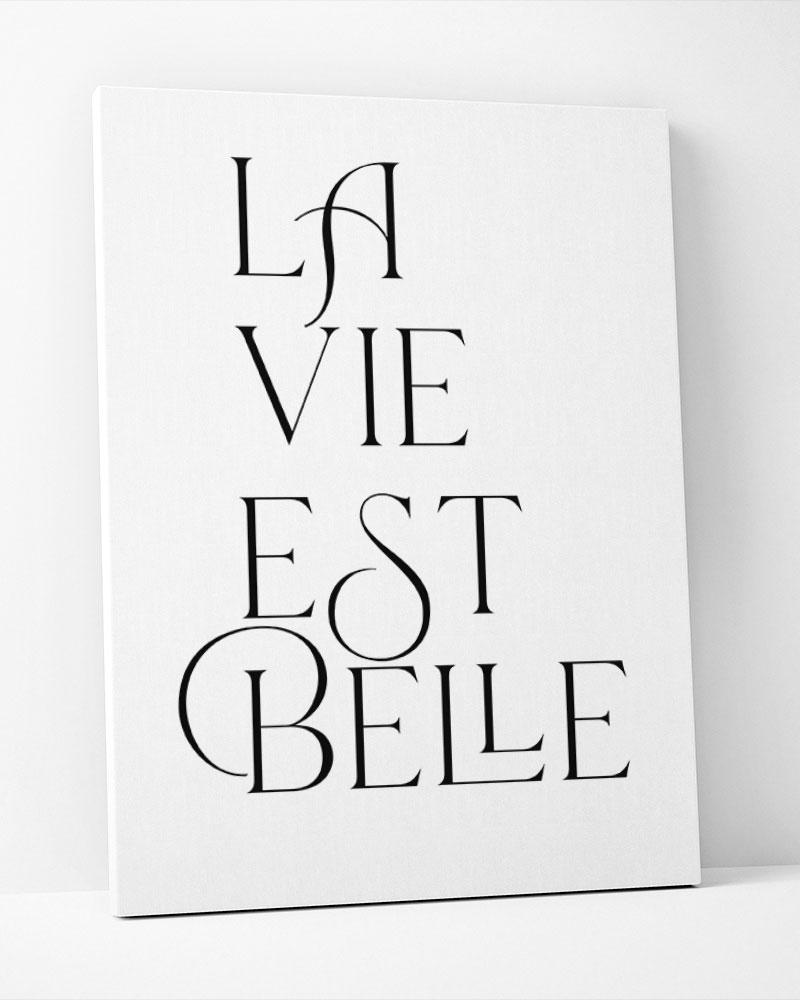 Placa Decorativa La Vie Est Belle