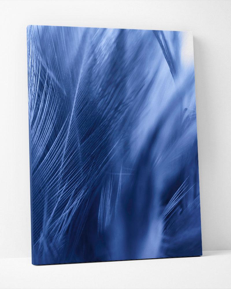 Placa Decorativa Pluma Azul II
