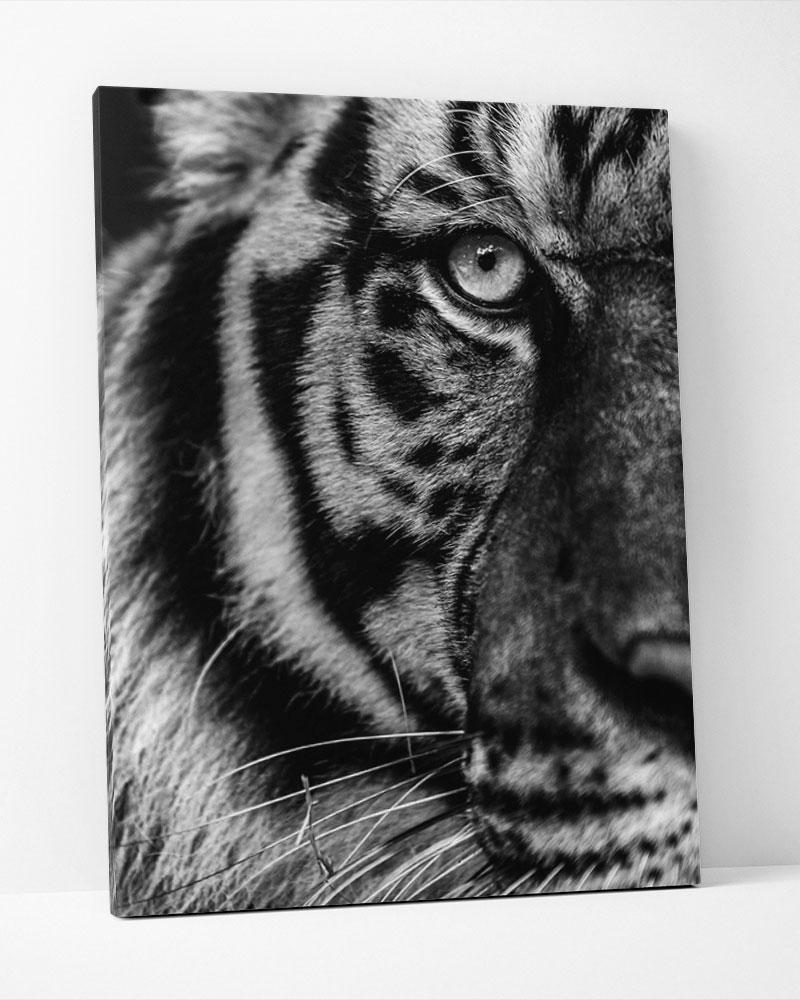 Placa Decorativa Tigre Pb