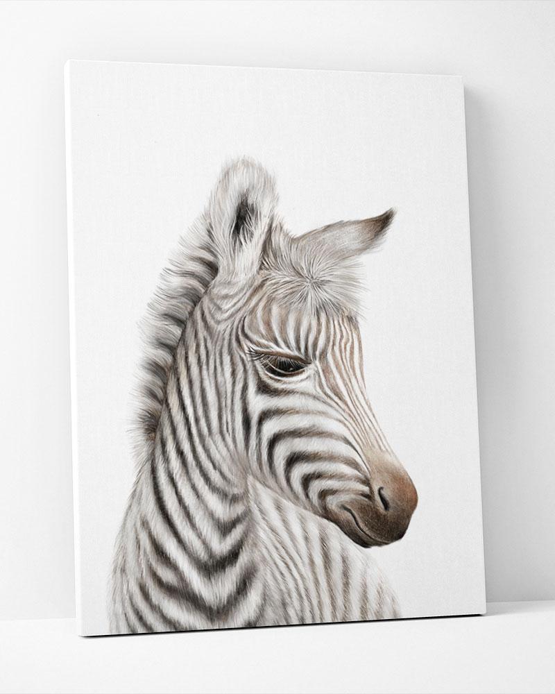 Placa Decorativa Zebra Baby
