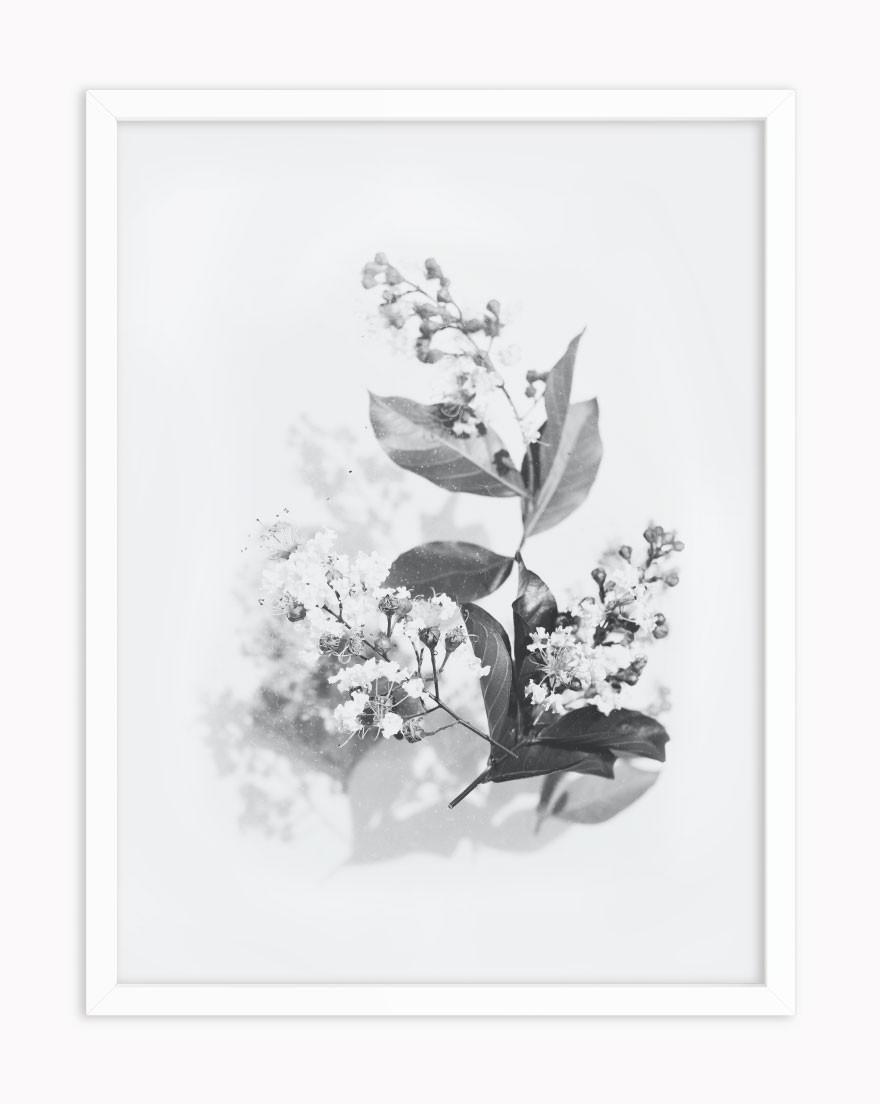 Quadro Abstract Flower BW II