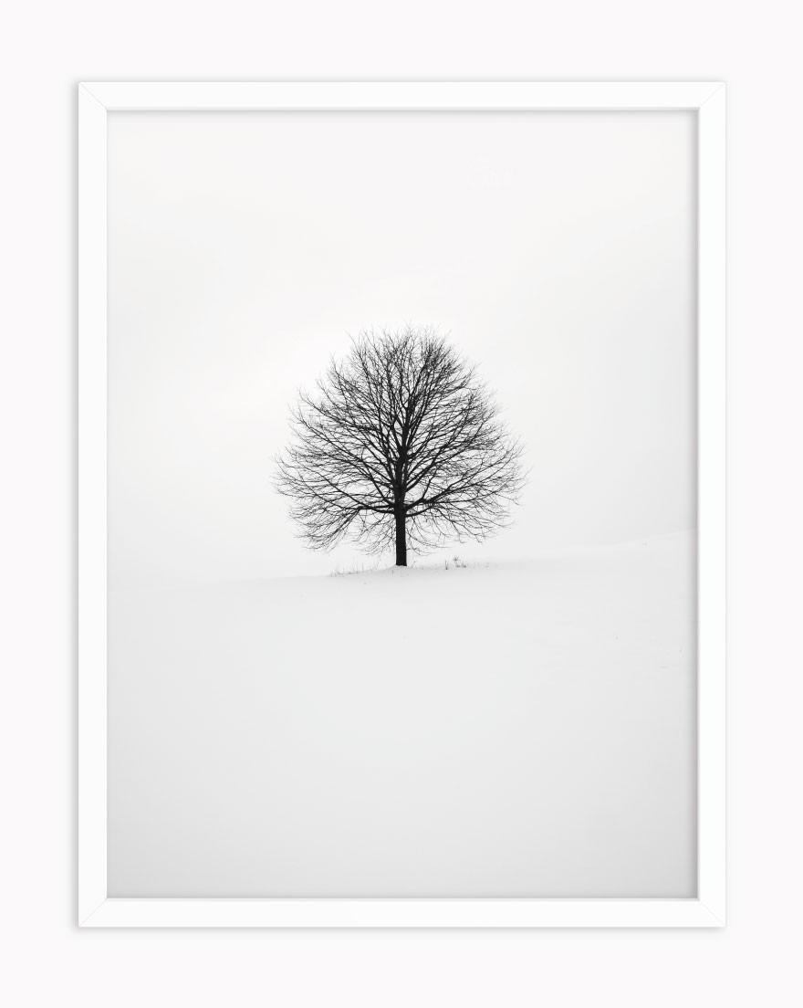Quadro Árvore de Inverno