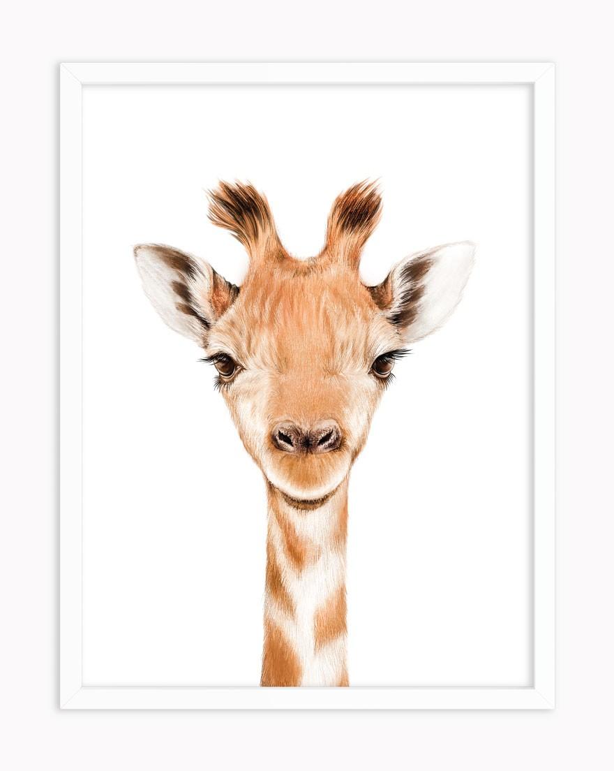 Quadro Baby Girafa