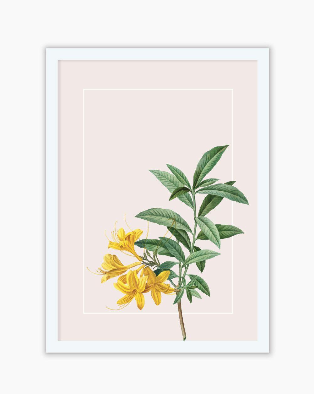 Quadro Botanical Lírio Amarelo