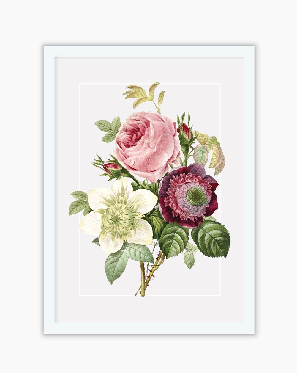Quadro Botanical Protea