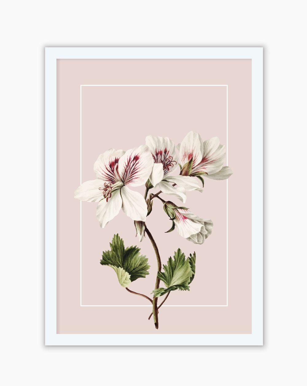 Quadro Botanical White Flower