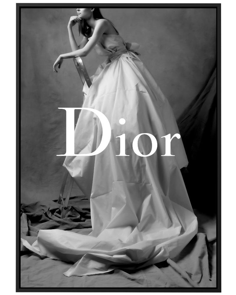 Quadro Dior Model