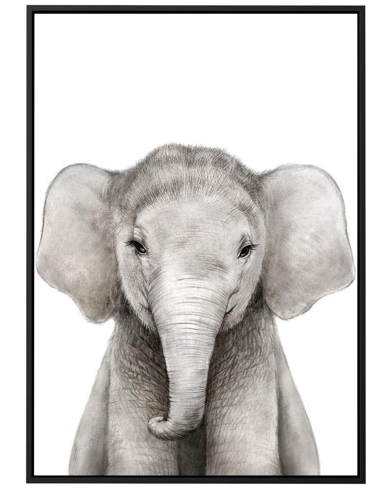 Quadro Elefante Baby