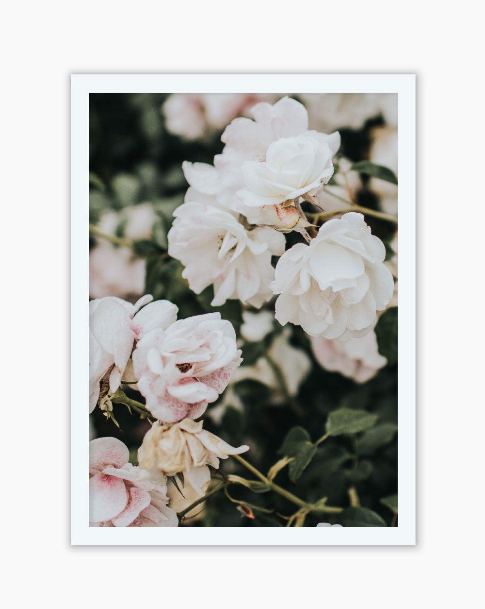 Quadro Elegance White Flowers