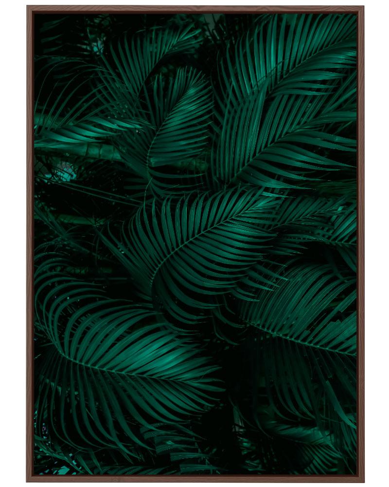 Quadro Floresta Tropical