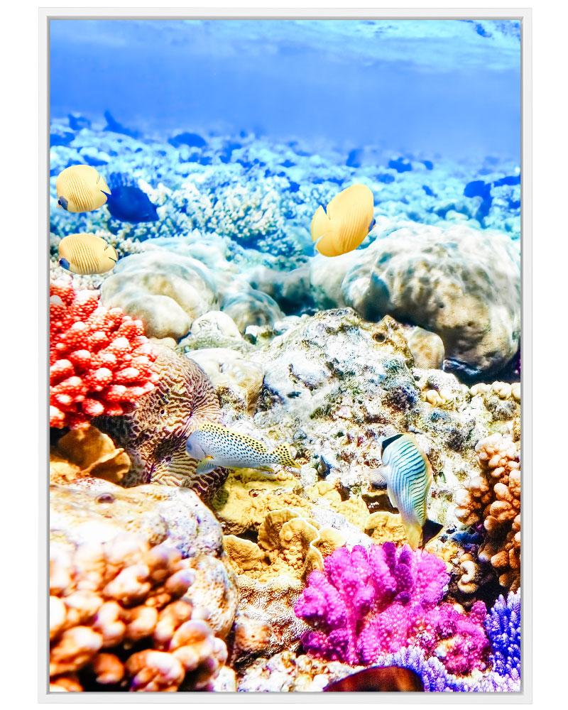 Quadro Fundo do Mar