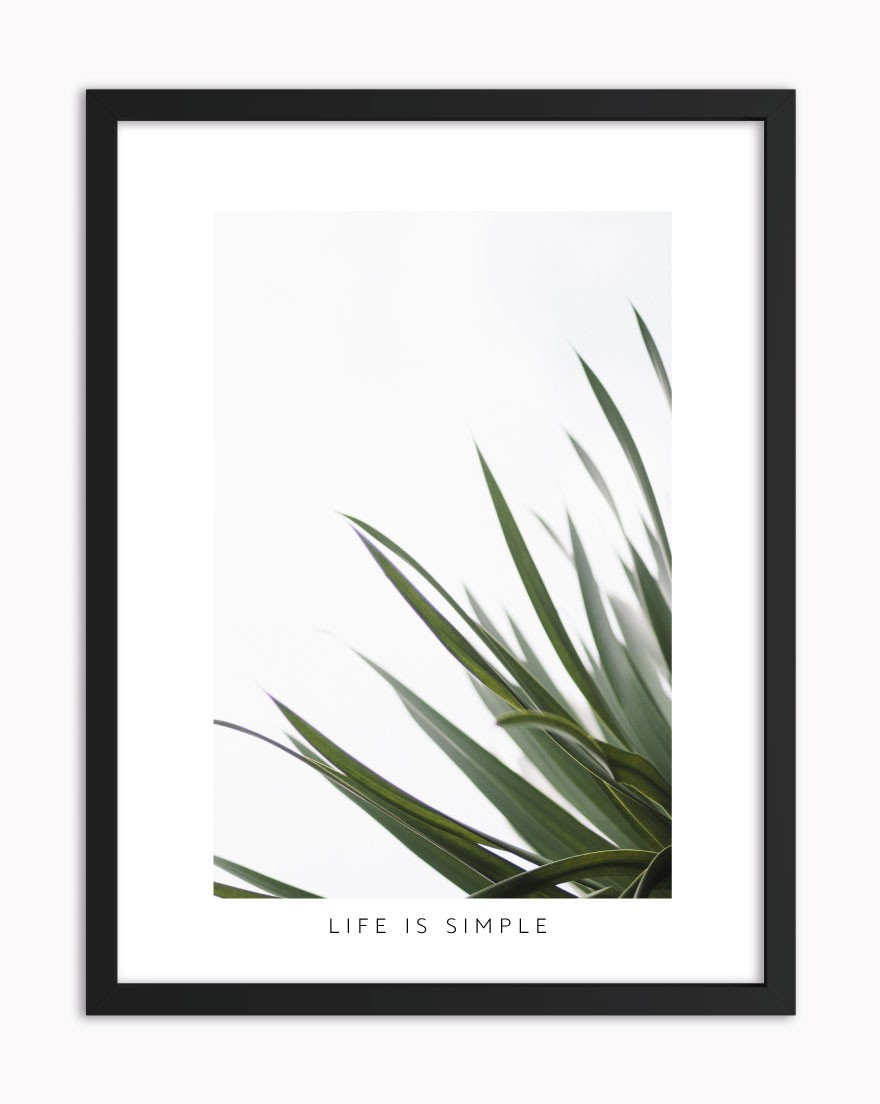 Quadro Green Life is Simple