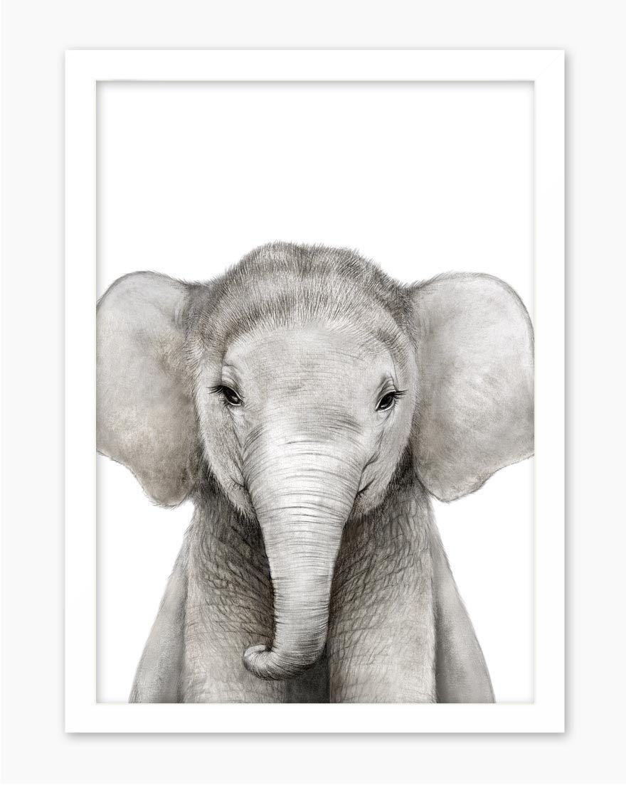 Quadro Kids Safari Elefante