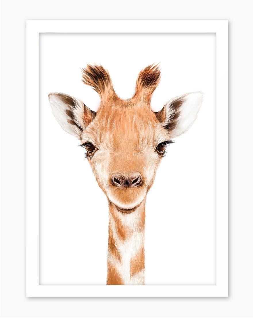 Quadro Kids Safari Girafa