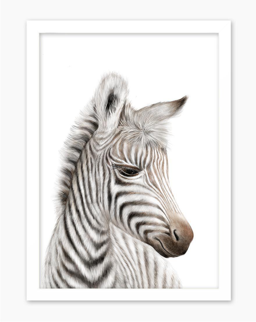 Quadro Kids Safari Zebra