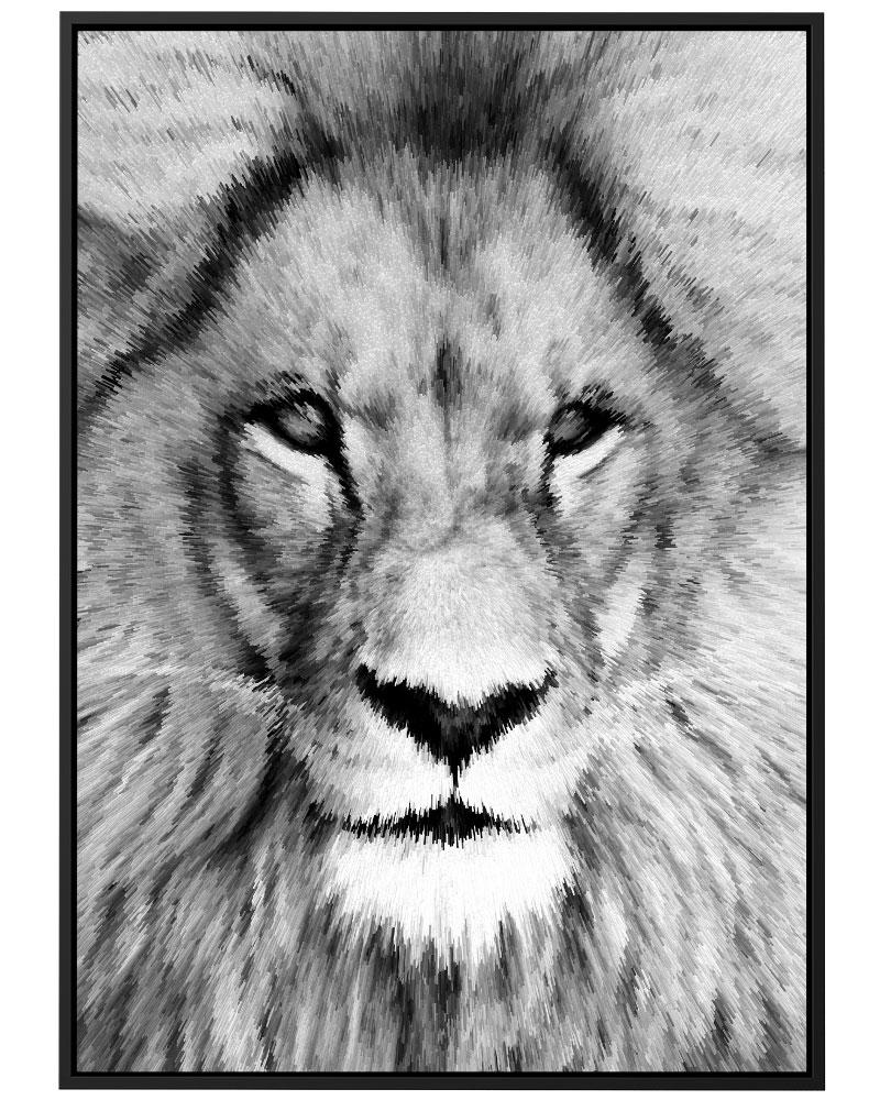 Quadro Lion