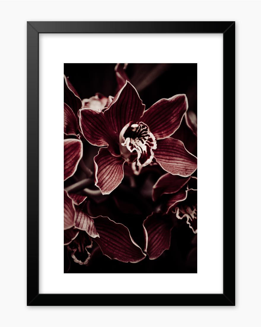 Quadro Marsala Flowers II